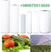 Vatan Plastik. We offer Turkish film for greenhouses 150 µm